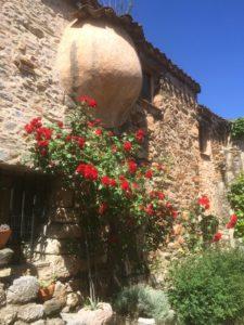 Castelnou flowered